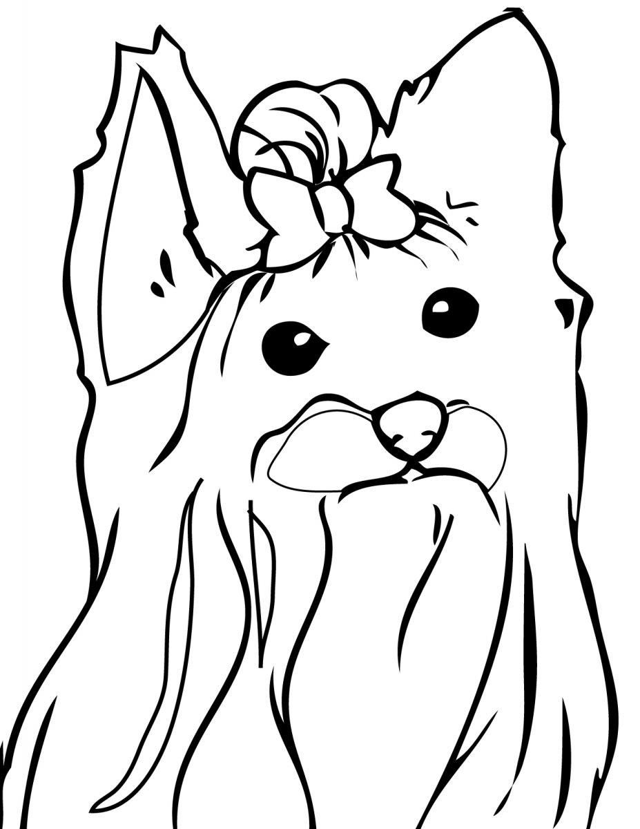 Shih Tzu Puppy Coloring Sheets Coloring Pages Shih Tzu Coloring Pages